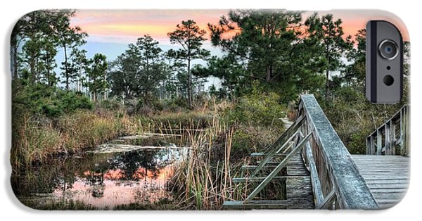 Florida Panhandle iPhone Cases - Fort Pickens Nature Trails iPhone Case by JC Findley