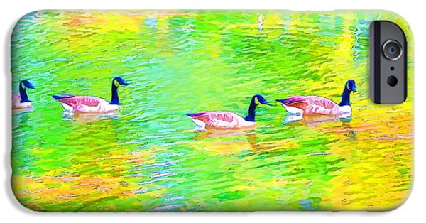 Canadian Geese Paintings iPhone Cases - Four Canadian geese in the water iPhone Case by Lanjee Chee