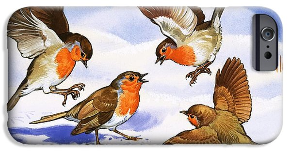 Animal Cards iPhone Cases - Four robins in the snow iPhone Case by English School
