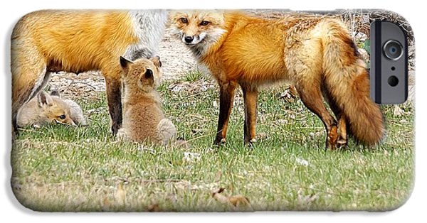 Bonding iPhone Cases - Fox Family Bonding Time iPhone Case by Deb Schense