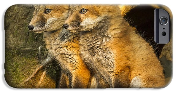 Little iPhone Cases - Fox Kit Twins iPhone Case by John Vose