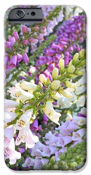 Foxglove Flowers Photographs iPhone Cases - Foxglove Card iPhone Case by Carol Groenen
