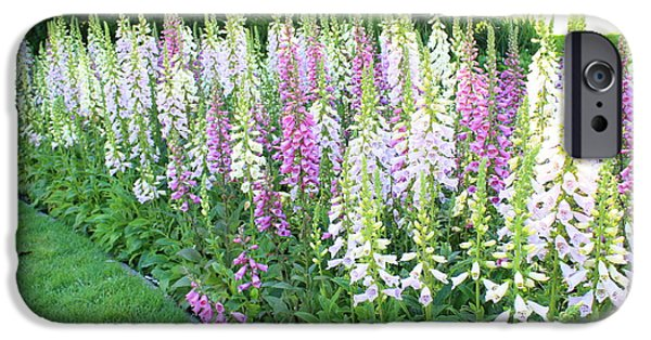 Foxglove Flowers Photographs iPhone Cases - Foxglove Garden iPhone Case by Carol Groenen