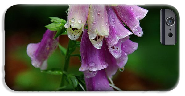Foxglove Flowers Photographs iPhone Cases - Foxgloves in the Rain iPhone Case by Susanne Van Hulst