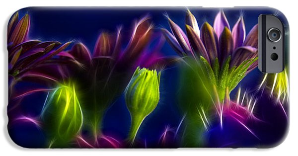 Nature Abstract iPhone Cases - Fractals iPhone Case by Stylianos Kleanthous