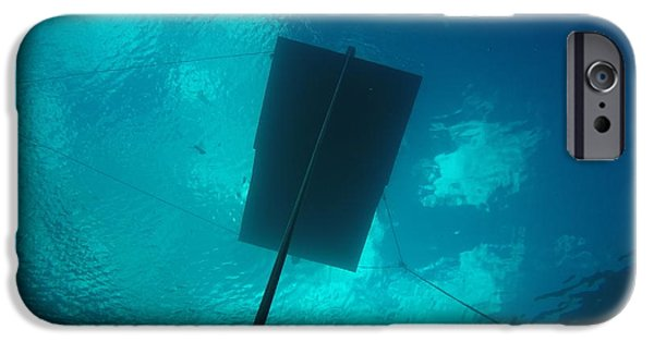 Apnea iPhone Cases - Free Divers Paradise iPhone Case by Todd Wade