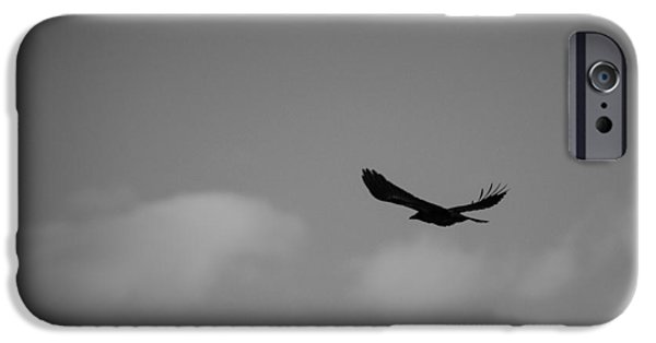 Crows iPhone Cases - Free Life iPhone Case by Ajay Jagta