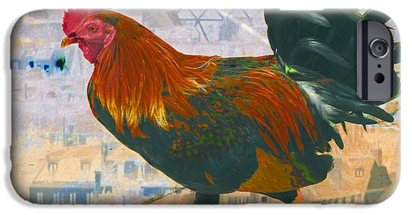Abstract Digital Photographs iPhone Cases - French Cock iPhone Case by Lew Lautin