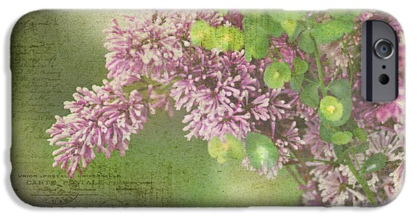 Lilacs iPhone Cases - French Market Series M iPhone Case by Rebecca Cozart
