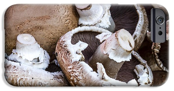 Locally Grown iPhone Cases - Fresh Portabella Mushrooms iPhone Case by Teri Virbickis