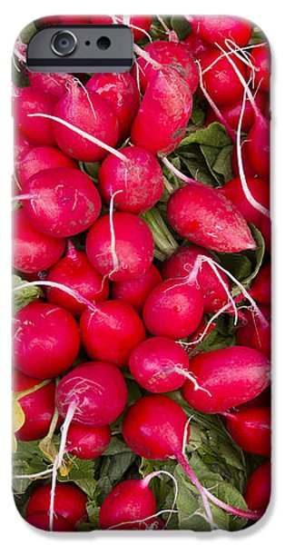 Fresh red radishes iPhone Case by John Trax