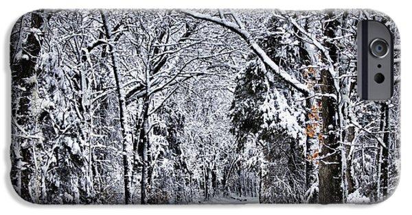 Fresh Snow iPhone Cases - Fresh Snow iPhone Case by Cricket Hackmann
