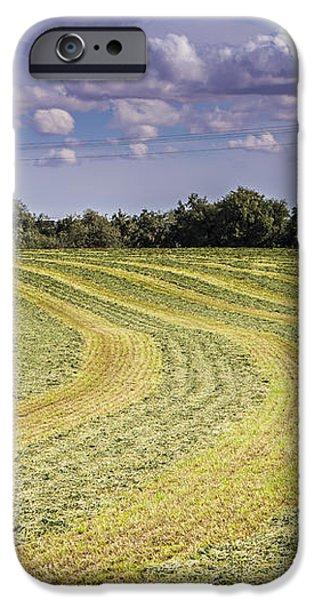 Freshly mown hay  iPhone Case by John Trax
