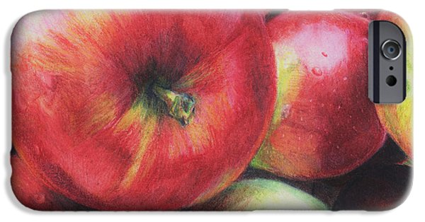 Maine Drawings iPhone Cases - Freshly Picked iPhone Case by Shana Rowe