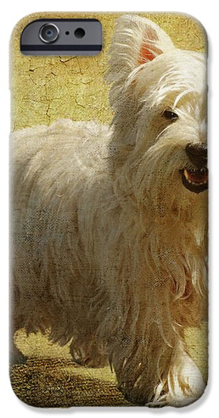 Friendly Smile iPhone Case by Lois Bryan