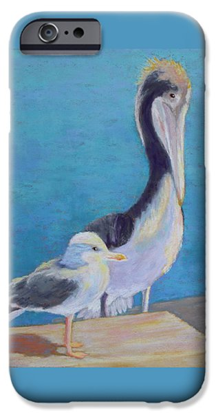 Seagull Pastels iPhone Cases - Friends iPhone Case by Nancy Jolley