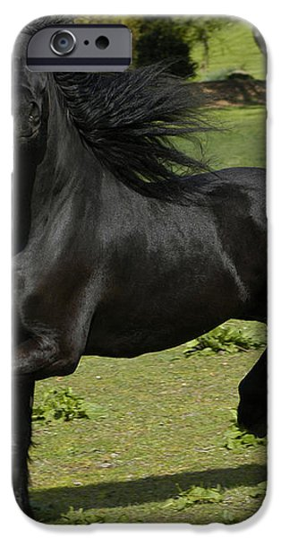 Friesian horse in galop iPhone Case by Michael Mogensen