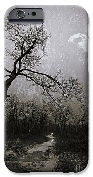 Gnarly iPhone Cases - Frigid Moonlit Night iPhone Case by John Stephens