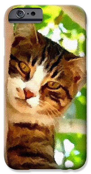 Abstract Digital Paintings iPhone Cases - Fritz - Loving Cat Creations Catus 1 no. 1 V B iPhone Case by Gert J Rheeders