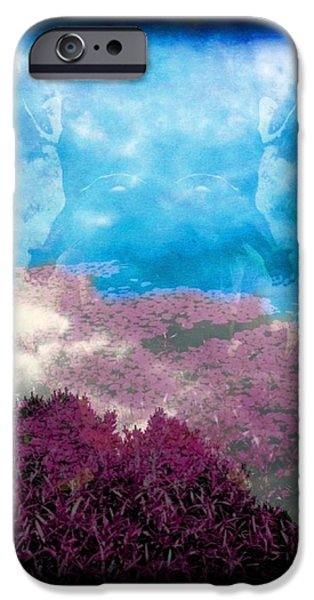 Angel Blues iPhone Cases - From the Heavens iPhone Case by Majula Warmoth