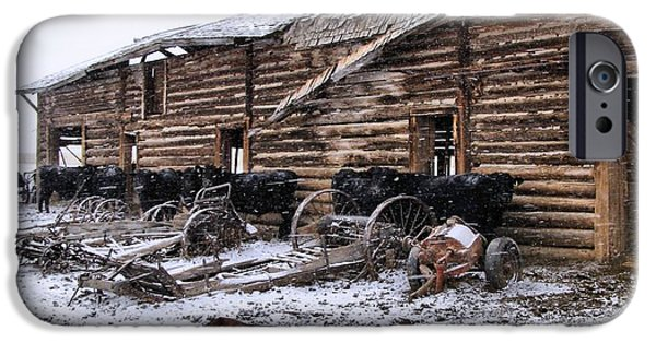 Old Barns iPhone Cases - Frozen Beef iPhone Case by Susan Kinney