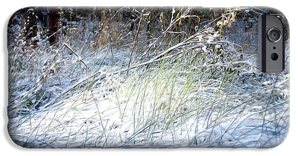 Wolf Picture Art iPhone Cases - Frozen Grass iPhone Case by Svetlana Sewell