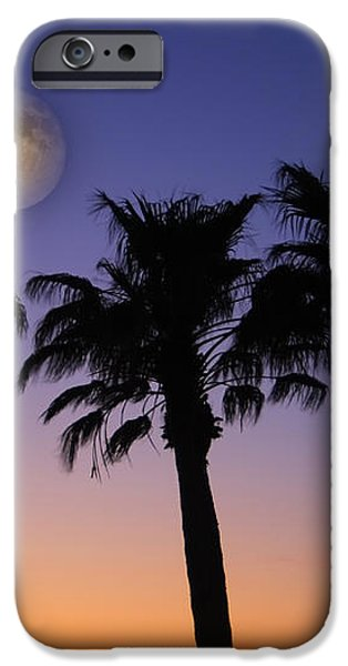 Full Moon Palm Tree Sunset iPhone Case by James BO  Insogna