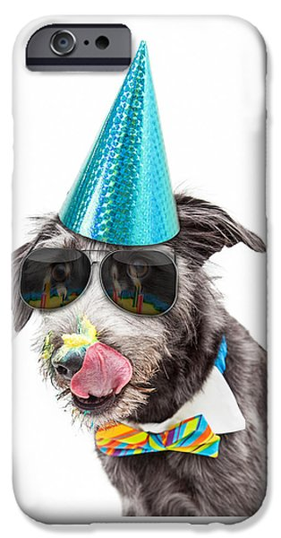 Party Birthday Party iPhone Cases - Funny Dog Eating Birthday Cake iPhone Case by Susan  Schmitz