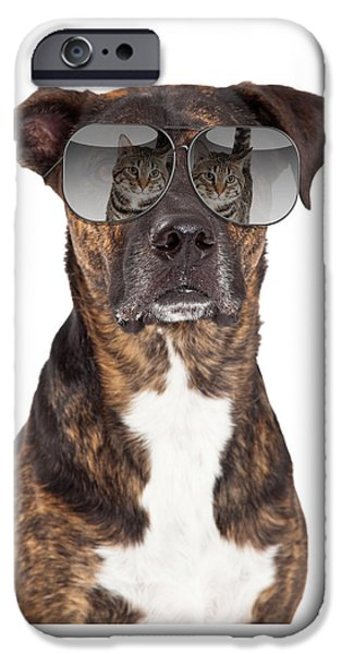 Dog Close-up iPhone Cases - Funny Dog With Cat Reflection in Sunglasses iPhone Case by Susan  Schmitz