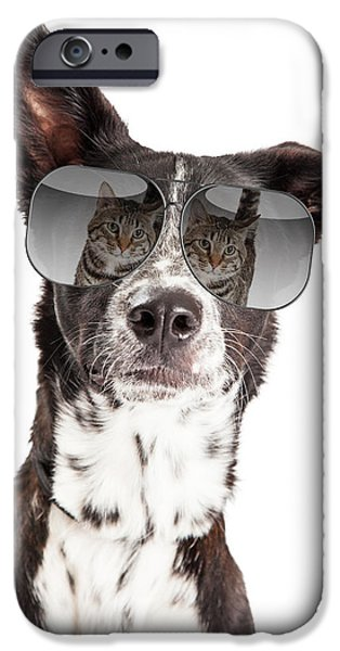 Dog Close-up iPhone Cases - Funny Dog With Reflection of Cat in Sunglasses iPhone Case by Susan  Schmitz