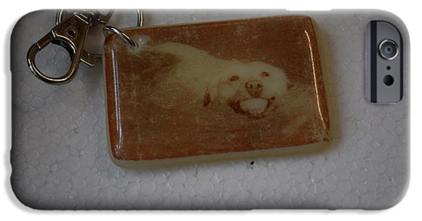 Dog Glass iPhone Cases - Fused Glass Photo Keyring iPhone Case by Rosalind Duffy