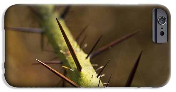 Berry iPhone Cases - Game of Thorns iPhone Case by Brent Snow
