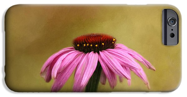 Cone Flowers iPhone Cases - Garden Bliss iPhone Case by Kim Hojnacki
