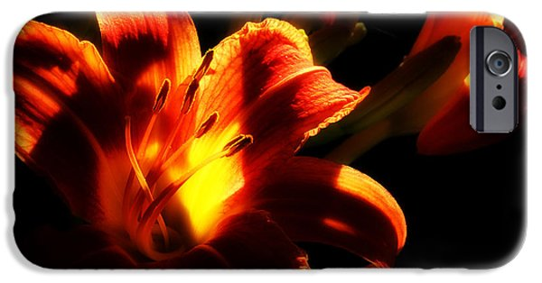 Day Lilies iPhone Cases - Garden Flames iPhone Case by Michael Eingle