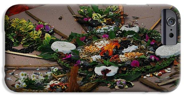 Disc iPhone Cases - Garden Mandala iPhone Case by Sue McQueen