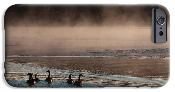 David iPhone Cases - Geese on Old Forge Pond iPhone Case by David Patterson