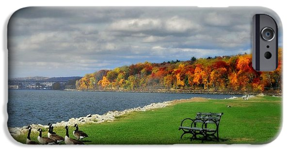 Autumn iPhone Cases - Geese on the Hudson iPhone Case by Diana Angstadt