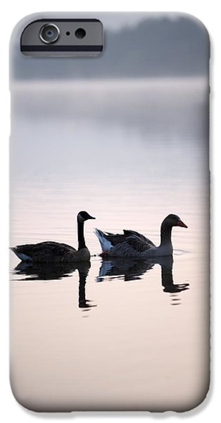Animals Photographs iPhone Cases - Geese On The Lake In The Mist iPhone Case by Gillham Studios