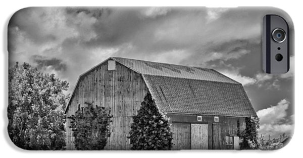 Crops iPhone Cases - Genesee County Barn 8395 iPhone Case by Guy Whiteley