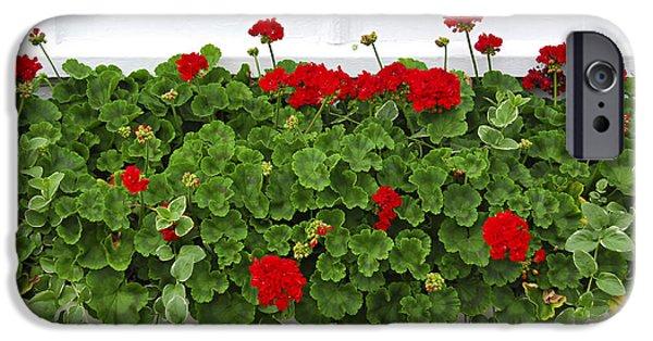 Flora Photographs iPhone Cases - Geraniums on window iPhone Case by Elena Elisseeva