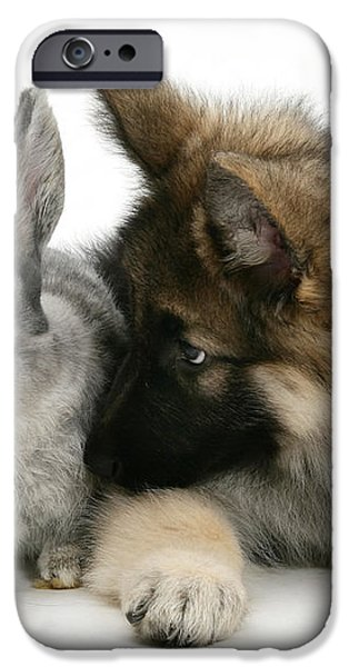 German Shepherd And Rabbit iPhone Case by Mark Taylor