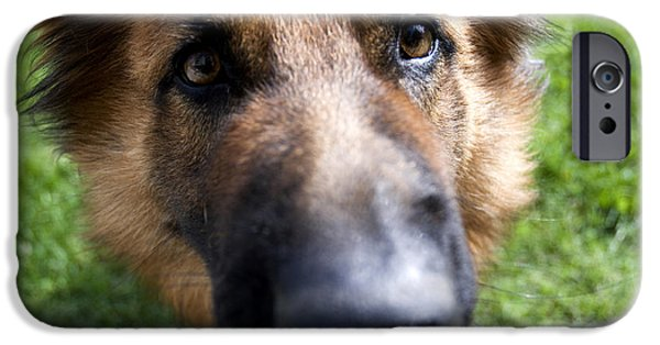 Dog Close-up iPhone Cases - German Shepherd dog iPhone Case by Fabrizio Troiani