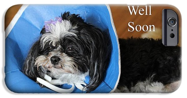 Dogs iPhone Cases - Get Well Greeting Card iPhone Case by Gary Canant