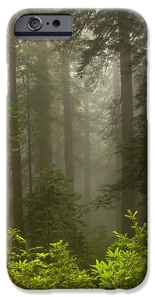 Giants in the Mist iPhone Case by Mike  Dawson