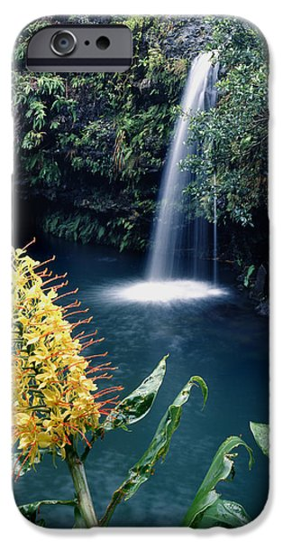 Forest iPhone Cases - Ginger Lily and Hawaiian Waterfall 100638 iPhone Case by Ed  Cooper Photography