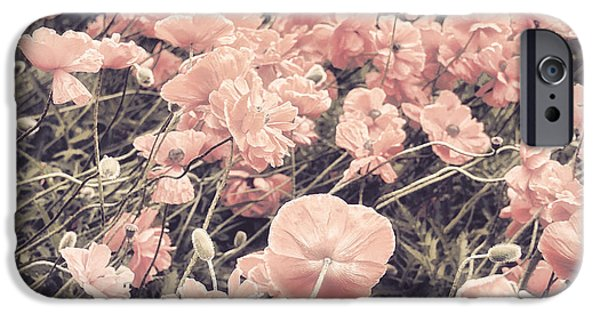 California Poppies iPhone Cases - Ginger Poppies II iPhone Case by Mindy Sommers