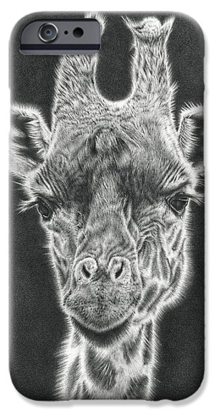 Photorealistic iPhone Cases - Giraffe Pencil Drawing iPhone Case by Heidi Vormer