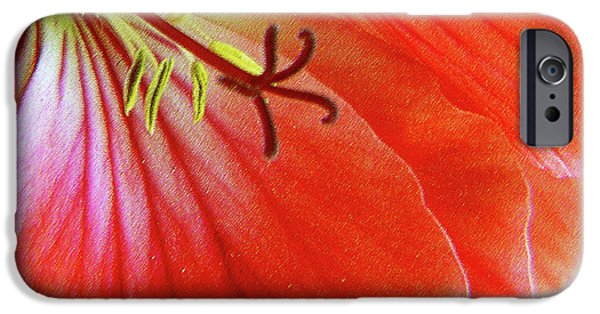 Red Geraniums iPhone Cases - Glorious Geranium iPhone Case by Ben and Raisa Gertsberg