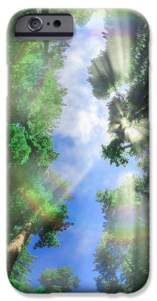 Mist iPhone Cases - Glory Amongst Redwoods iPhone Case by Scott Campbell