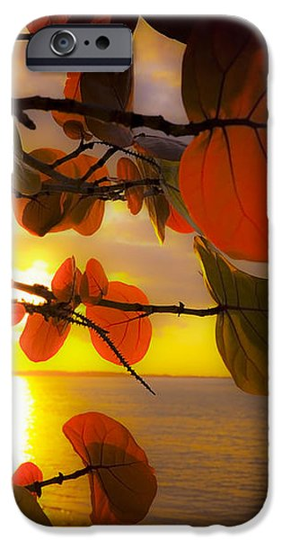 Glowing Red II iPhone Case by Stephen Anderson